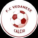Logo Vedanese